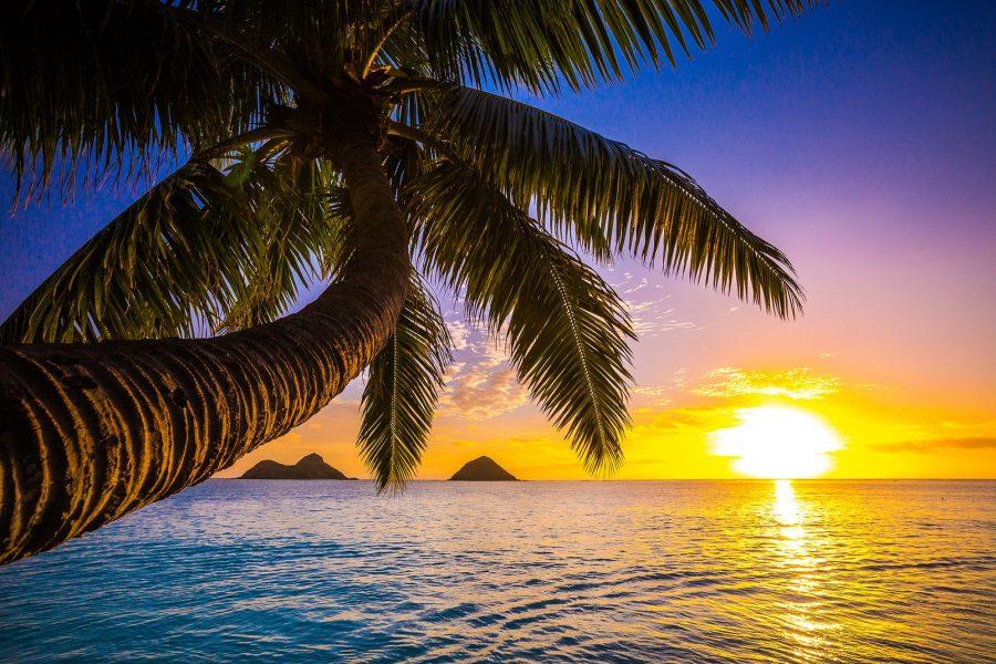 Nantes – Hawaï disponible dans deux semaines !